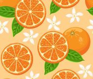 Oranges seamless pattern. Citrus and fruit cartoons, green leaves and flowers. stock illustration