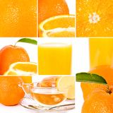 Oranges set Royalty Free Stock Photos