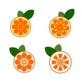 Oranges set, orange collection, citrus stock illustration