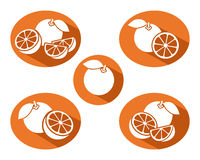 Oranges set. Vector. Illustration food Royalty Free Stock Photo
