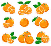 Oranges set. Vector Royalty Free Stock Photo