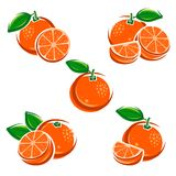 Oranges set. Vector Royalty Free Stock Image