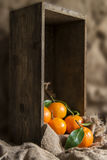 Oranges on stalk in rustic kitchen setting with old wooden box a Stock Image