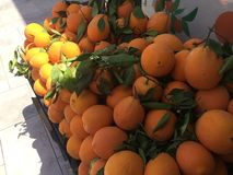 Oranges at the stand. Fresh oranges with leaves shadow and royalty free stock photo