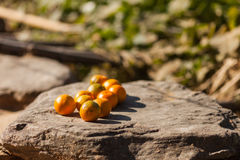 Oranges on stone, rural Nepal Royalty Free Stock Photography