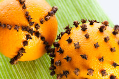 Oranges studded with cloves Royalty Free Stock Image