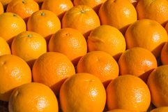 Oranges in the Supermarket royalty free stock photo