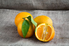 Oranges on table background and woven sack Stock Image