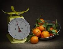 Oranges, tangerines on scales on rustic hessian. Dark, chiaroscuro style still life. Vintage theme. Oranges, tangerines on scales on hessian. Dark, chiaroscuro stock photo