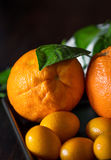 Oranges with tangerins in close-up Royalty Free Stock Photography