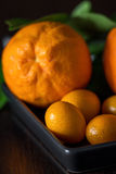 Oranges with tangerins in close-up Royalty Free Stock Photos