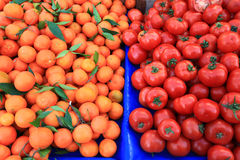 Oranges and tomatoes Royalty Free Stock Images