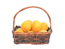 Oranges in trellis basket Stock Image