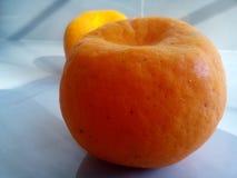 Oranges. Two oranges on floor royalty free stock photos