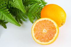 Oranges. Two oranges and green leaves still life Stock Images