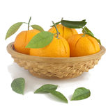 Oranges in a vase. Royalty Free Stock Images