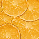 Oranges - vector background Royalty Free Stock Image
