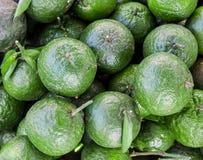 Oranges vertes mûres sur l'un l'autre photos stock