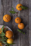 Oranges vitamins tangerine fresh fruit Stock Image