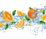 Oranges with water splash Stock Images