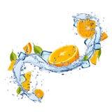 Oranges in water splash on white background royalty free stock photos