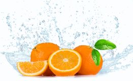 Oranges with Water splashes Royalty Free Stock Images