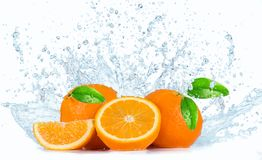 Oranges with Water splashes Stock Photography