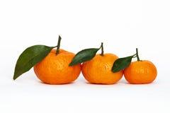 Oranges on white. A three oranges on white Stock Photos