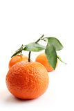 Oranges and white Royalty Free Stock Photo