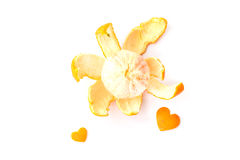 Oranges on white background Stock Images