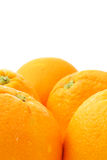 Oranges on white Royalty Free Stock Images