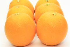 Oranges in a white background Stock Photos