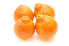 Oranges in a white background Royalty Free Stock Photo