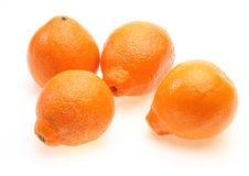 Oranges in a white background Royalty Free Stock Images
