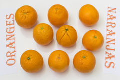 Oranges. On white background,  in Spanish and English Royalty Free Stock Photo