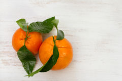 Oranges on white background Royalty Free Stock Photos