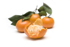 Oranges in white backgrounds Stock Images