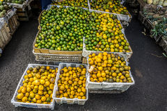 Oranges in white plastic box in traditional fruit market photo taken in Bogor Indonesia Royalty Free Stock Photo