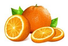 Oranges stock illustration