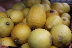 Lemons at the Market royalty free stock images