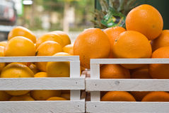 Oranges in wood box. Oranges in twin wood box Royalty Free Stock Photography