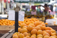 Oranges. A wooden bin filled with navel oranges at a farmer's market. Sign viewed from behind. Shoppers out of focus in the background royalty free stock image