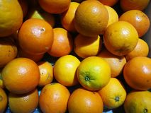 The oranges Royalty Free Stock Images
