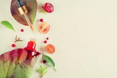 Orangic-Parfüm mit Kräuterbestandteilen Das Konzept von Biokosmetik und von Parfüm Natürliche Auszüge, Öle, Serum stockfoto
