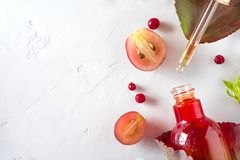Orangic-Parfüm mit Kräuterbestandteilen Das Konzept von Biokosmetik und von Parfüm Natürliche Auszüge, Öle, Serum lizenzfreie stockfotos