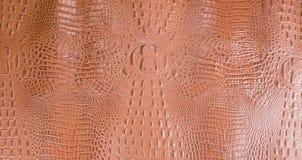 Orangish выбитая текстура кожи аллигатора Стоковая Фотография