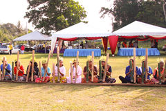 Orango indigeno Asli fotografia stock libera da diritti