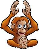 Orangután Safari Animals Cartoon Character Imagen de archivo