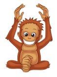 orangutan Vektor Illustrationer