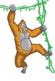 Orangutan Royalty Ilustracja